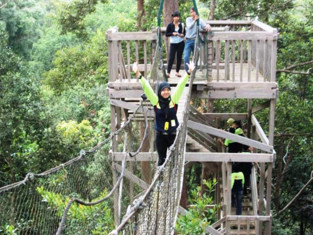 Canopy Bridge Bukit Bengkirai