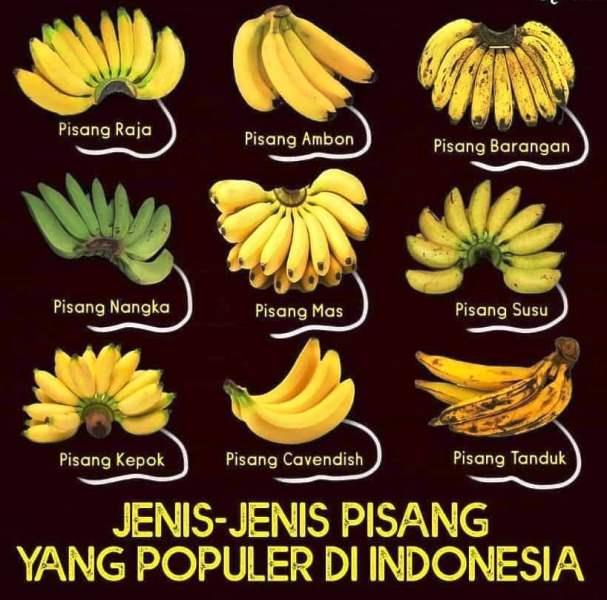 Jenis pisang Indoensia yang kita sudah ketahui mendukung new normal