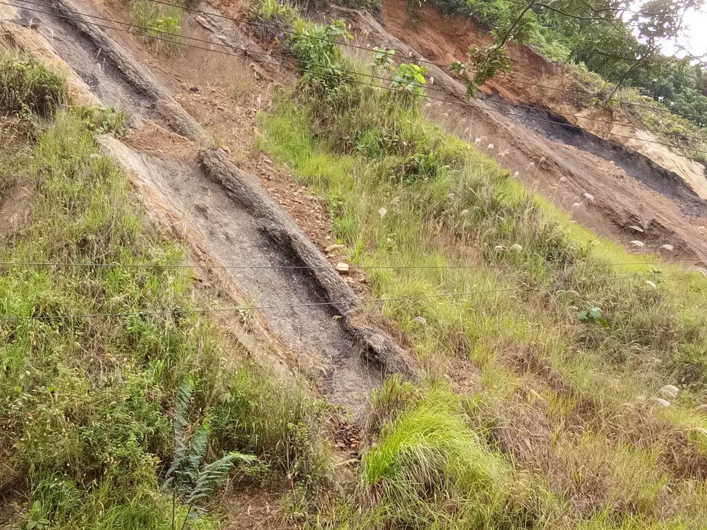 Singkapan Batu bara yang banyak ditemukan di wilayah jalan Palaran I Dokumentasi Pribad