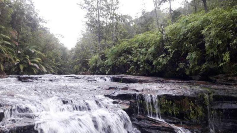 Pemandangan alam menyusur sungai Mahakam